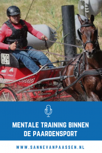 mentale training voor ruiters en paardensport