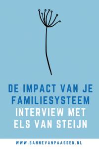 familiesysteem interview els van steijn