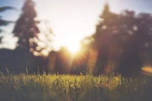 ochtendroutine voor meer energie