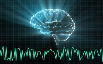 Welke verschillende hersengolven zijn er?