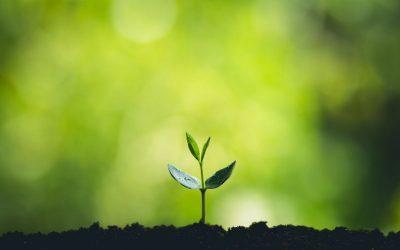 Wat zijn duurzame prestaties?